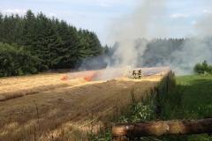 Wiesenbrand am 12.07.2015